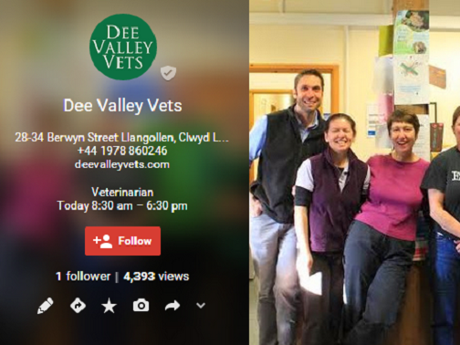 Dee Valley Vets - About - Google+